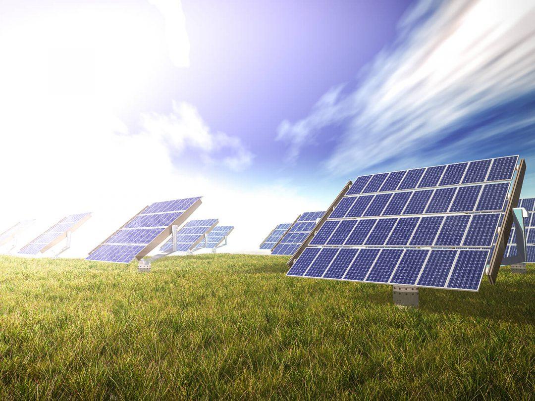 solar-panels-in-a-meadow